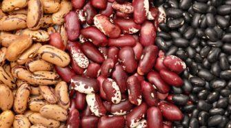 Frijol orgánico mexicano, entre los superfoods mundiales