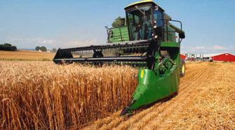Los precios de los alimentos vuelven a subir en noviembre