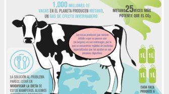 Vacas menos flatulentas