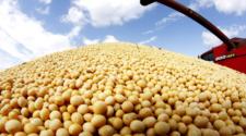 China aprueba importación de granos GM de Estados Unidos