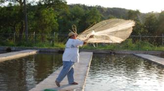 Conapesca propone crear consejos estatales de pesca y acuacultura
