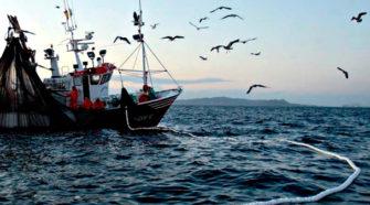 Gobierno e industria acuerdan plan para impulsar al sector pesquero