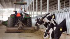 Productores de leche piden dar preferencia a compra de lácteos nacionales