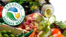 Certifica la Sagarpa a 13.5 mil productores orgánicos