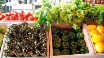En Michoacán, buscan integrar consejo de producción orgánica