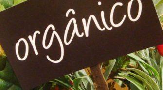 Pide legislador transparentar proceso de certificación orgánica