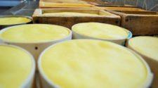 Productoras de Zacatecas emprenden con quesos orgánicos