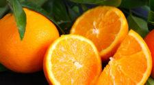 Alistan autoridades plan para equilibrar el mercado de cítricos