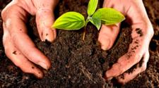 Especialistas de AL y Asia se suman al movimiento agroecológico