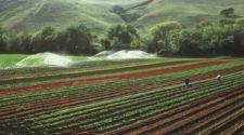Reutilización del agua ante los retos agrícolas