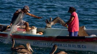 Conapesca destinará mil 159 mdp al sector pesquero y acuícola