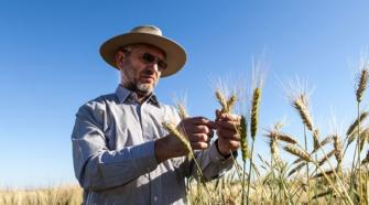 México cuenta con uno de los investigadores de trigo más reconocidos del mundo
