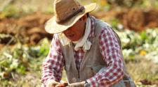 Campesinos y autoridades coinciden en fortalecer programas para el campo