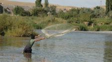 Corroboran trabajo a favor de la productividad del campo y pesca
