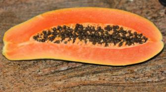 EEUU anula nota contra la papaya mexicana