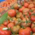 Exportaciones de jitomate bajan 30% en un mes
