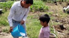 Productores chiapanecos adoptan innovaciones agrícolas