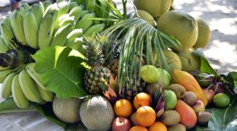 Crece comercio internacional de frutas exóticas producidas en México