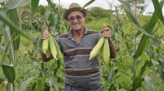 Prácticas sustentables para sembrar mejor y en menos tiempo