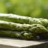 Salamanca registra pérdidas del 50% en cultivo de espárrago