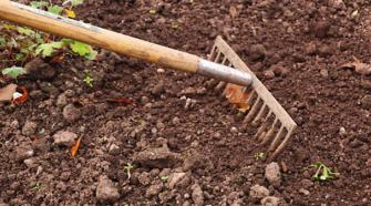 Encapsulado de fertilizantes eleva hasta 90% la eficiencia en cultivos