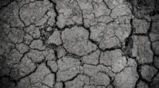 México desarrolla modelo para detener la degradación de suelos