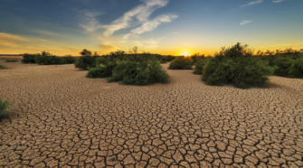 Ejercen más de 536 mdp en atención a productores afectados por sequía