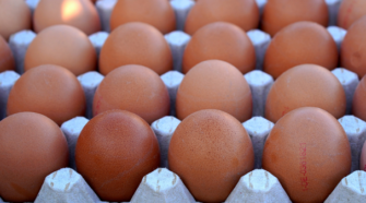 México, cuarto productor mundial de huevo