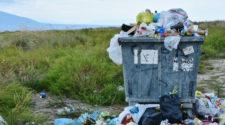 Reducir desperdicio de alimentos ayudará al medio ambiente: FAO