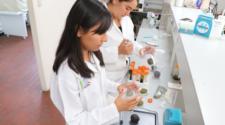 Trabajan en bioplaguicida a base de guanábana y chirimoya