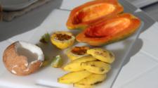 Buscan sustentabilidad de coco, plátano y papaya en Michoacán