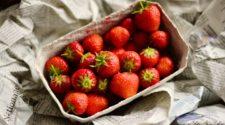 Crece interés de los consumidores por envases sostenibles