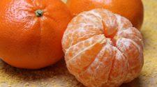Bacterias y levaduras marinas pueden proteger a las frutas