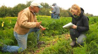 Críticas a la agricultura orgánica