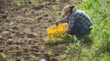 ¿Por qué es importante la materia orgánica en la acción biológica del suelo?