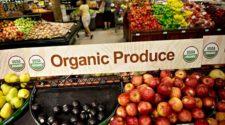 Otro año record para la agricultura orgánica