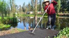 Prevalece tecnología prehispánica con el cultivo en chinampas