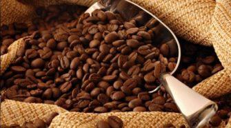 Certifican café orgánico de Zacatlán