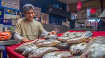 Productores acuícolas y pesqueros recibirán apoyo técnico y comercial
