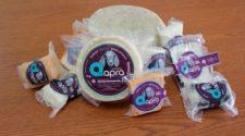 Certifican leche de cabra producida por la Universidad Autónoma de Querétaro