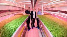 Londres, primer país con granja urbana subterránea y orgánica