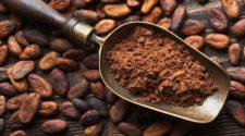 Natural, orgánico y gourmet, cualidades por las que apuestan emprendedores