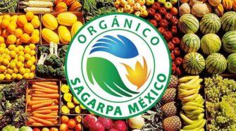 """Recibe """"Los Flamboyanes"""" certificación orgánica"""