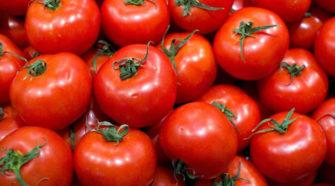 Más impuestos a tomate mexicano de no resolverse controversia con EEUU