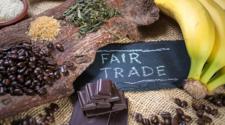 ONG impulsan mercados ecológicos en Mérida