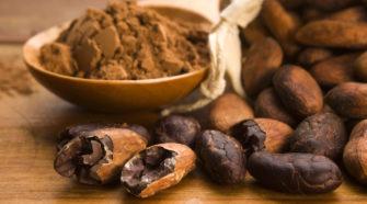 """Crean clúster de innovación y tecnología para ofrecer """"el mejor chocolate del mundo"""""""