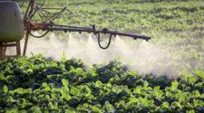 México usa 111 plaguicidas que en otros países ya están prohibidos