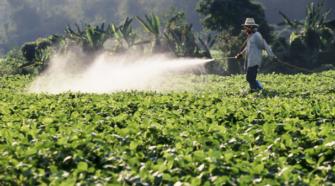 Senasica y Cofepris actualizarán regulación sobre plaguicidas