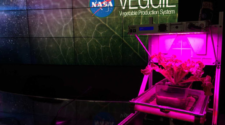 Ingeniero mexicano busca transformar la agricultura en el espacio
