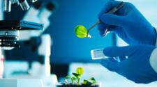 CoMaBio y la FND apoyarán proyectos sostenibles de agrobiotecnología